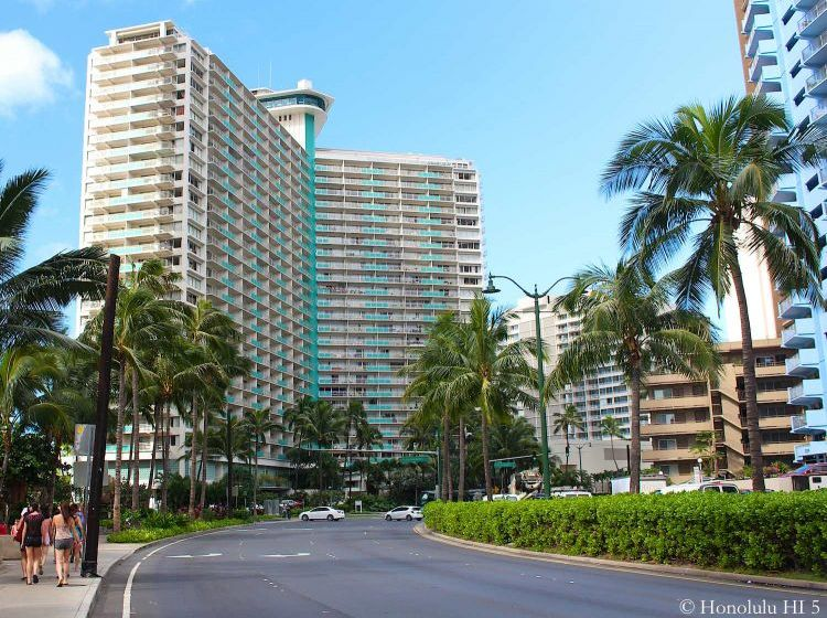 Ilikai Apartment Building Condos Seen From Ala Wai Boulevard with Palm Trees in the Front