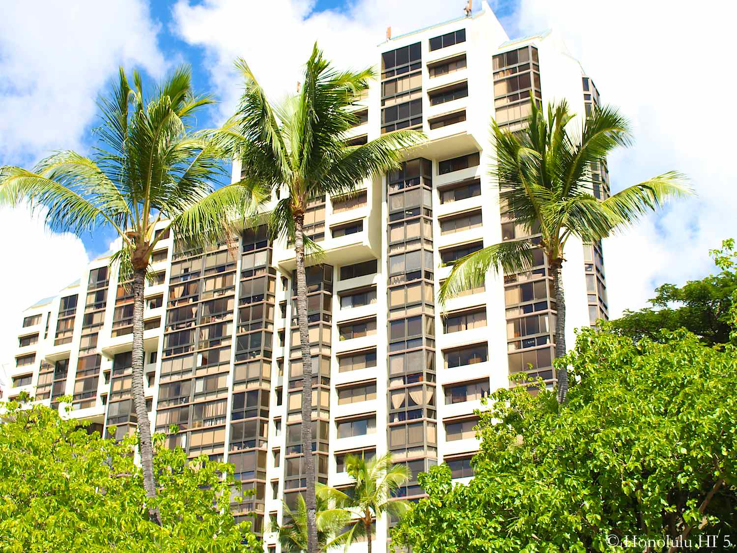 One of Mauna Luan Condo Towers in Hawaii Kai with Palm Trees Swaying in the Front