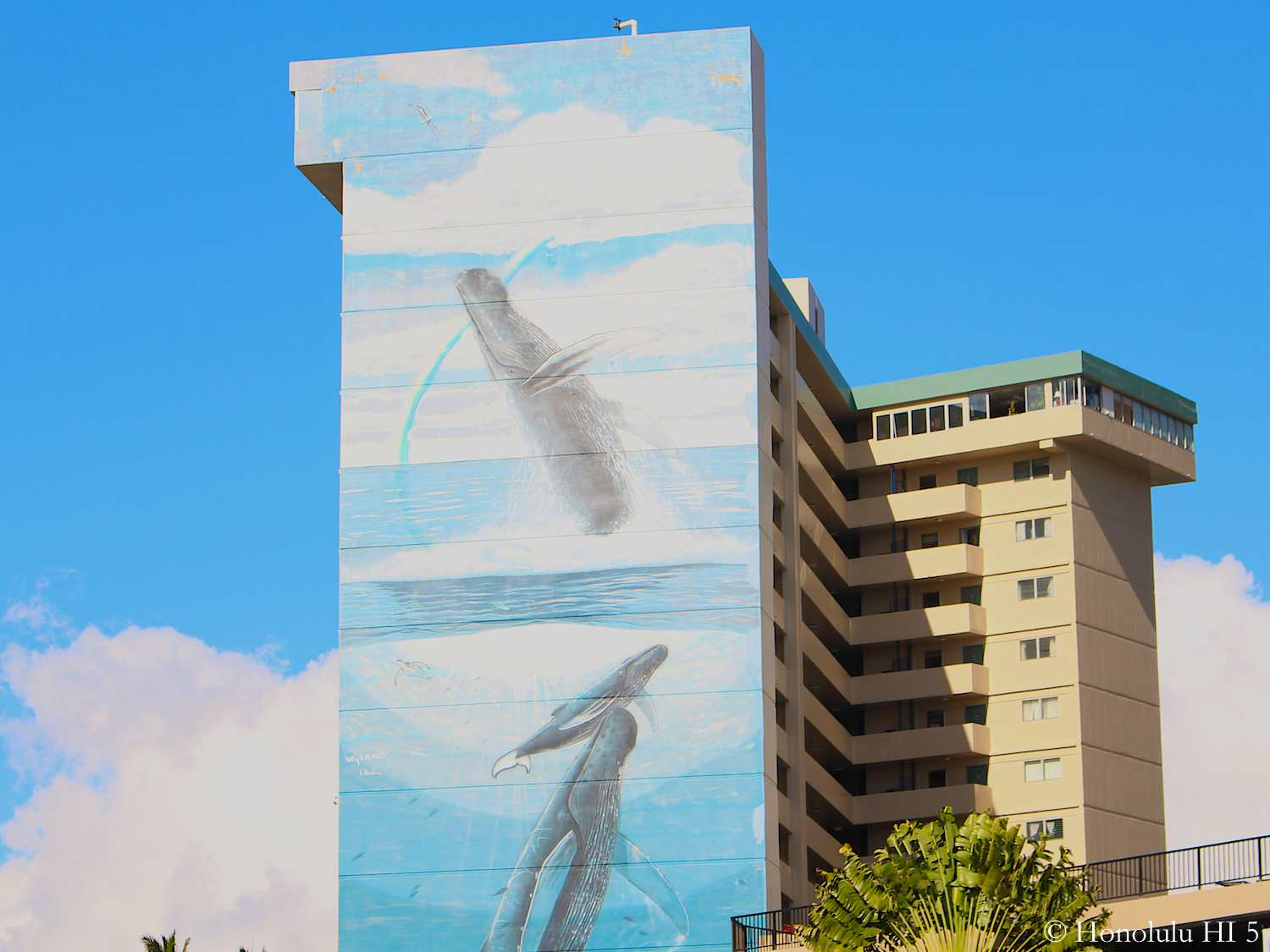 Royal Aloha Condo's Whale Mural on Side of Building