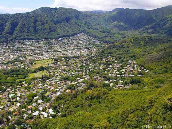 Homes in Manoa Deep in the Valley - Aerial Photo