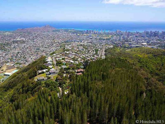 St Louis Heights Homes in Honolulu at the Top - Aerial Photo