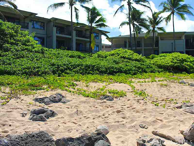 North Shore Oahu Condo Beach Front
