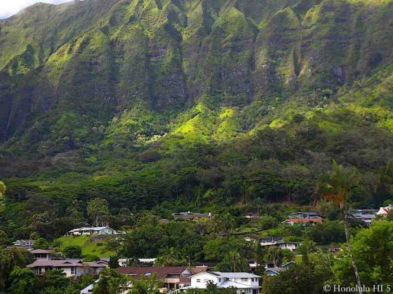 Maunawili Homes Set Against a Mountain