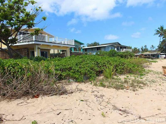 Haleiwa Beachfront Homes