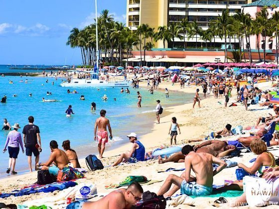 Waikiki Condos For Sale Experts In Investment Lifestyle