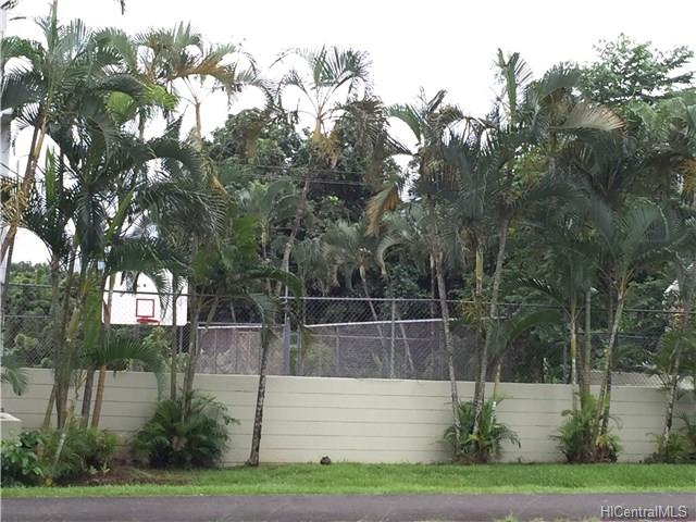 Mountain View Terrace #A101 (Kaneohe Town) 201520237 photo 5