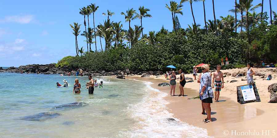 37 Best Beaches on Oahu With Useful Map & Great Photos
