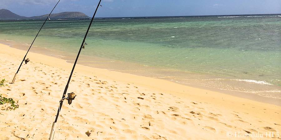 Fishing Rods Stuck On Beach In Hawaii