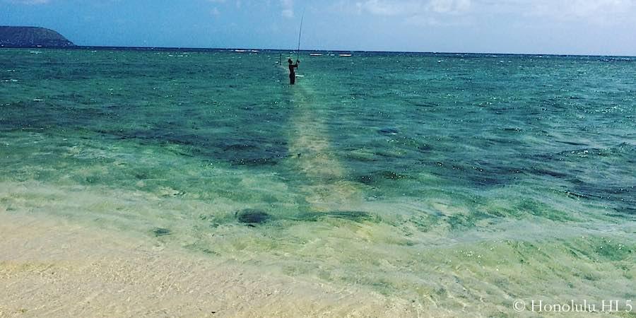 Guide to fishing in hawaii oahu maui kauai big island for Fish in hawaii