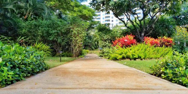 Watermark walking path