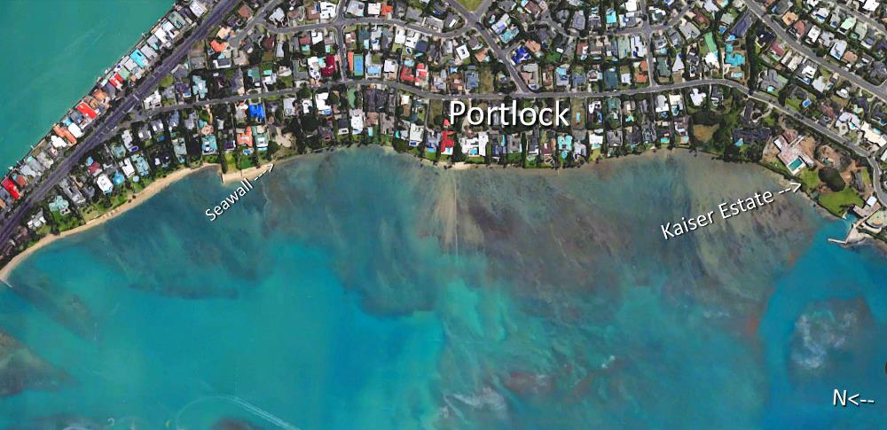 Portlock Aerial Map