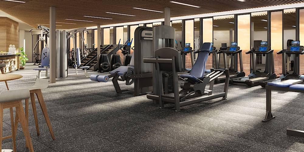 Aalii Condo Gym Rendering