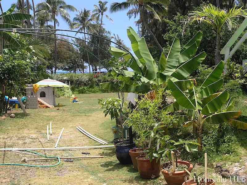 Kailua Fixer Upper - Original Backyard