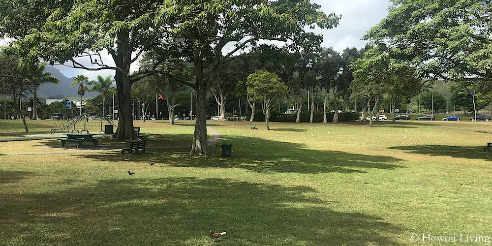 Puhakupu Park