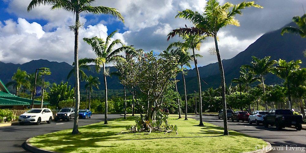 Le Jardin Academy in Kailua