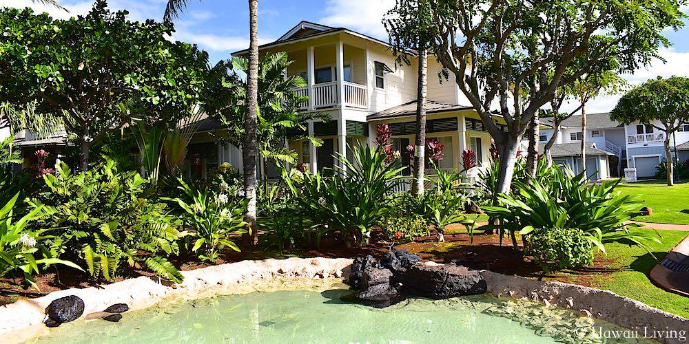 Coconut Plantation in Ko Olina