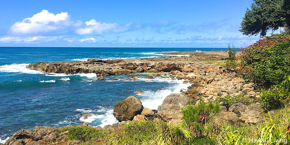 Sharks Cove - Oahu's North Shore