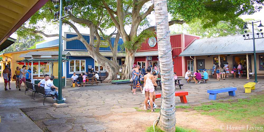 Haleiwa Store Lofts